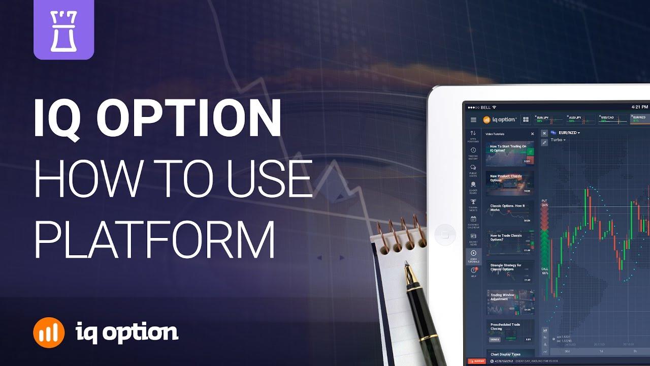 iq options webtrader